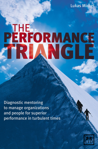 Management Buch: The Performance Triangle